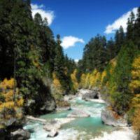 Environment of Bhutan